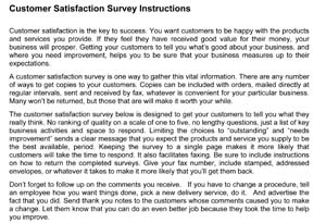 Customer Service Satisfaction Survey #2